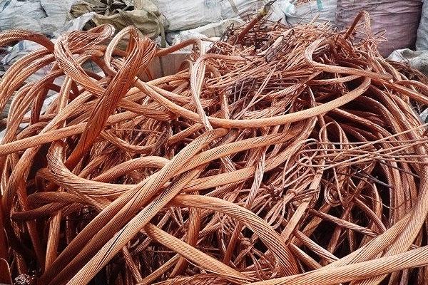 copper_mill_berry_23F049986-8D29-D268-95CC-02250F909F24.jpg